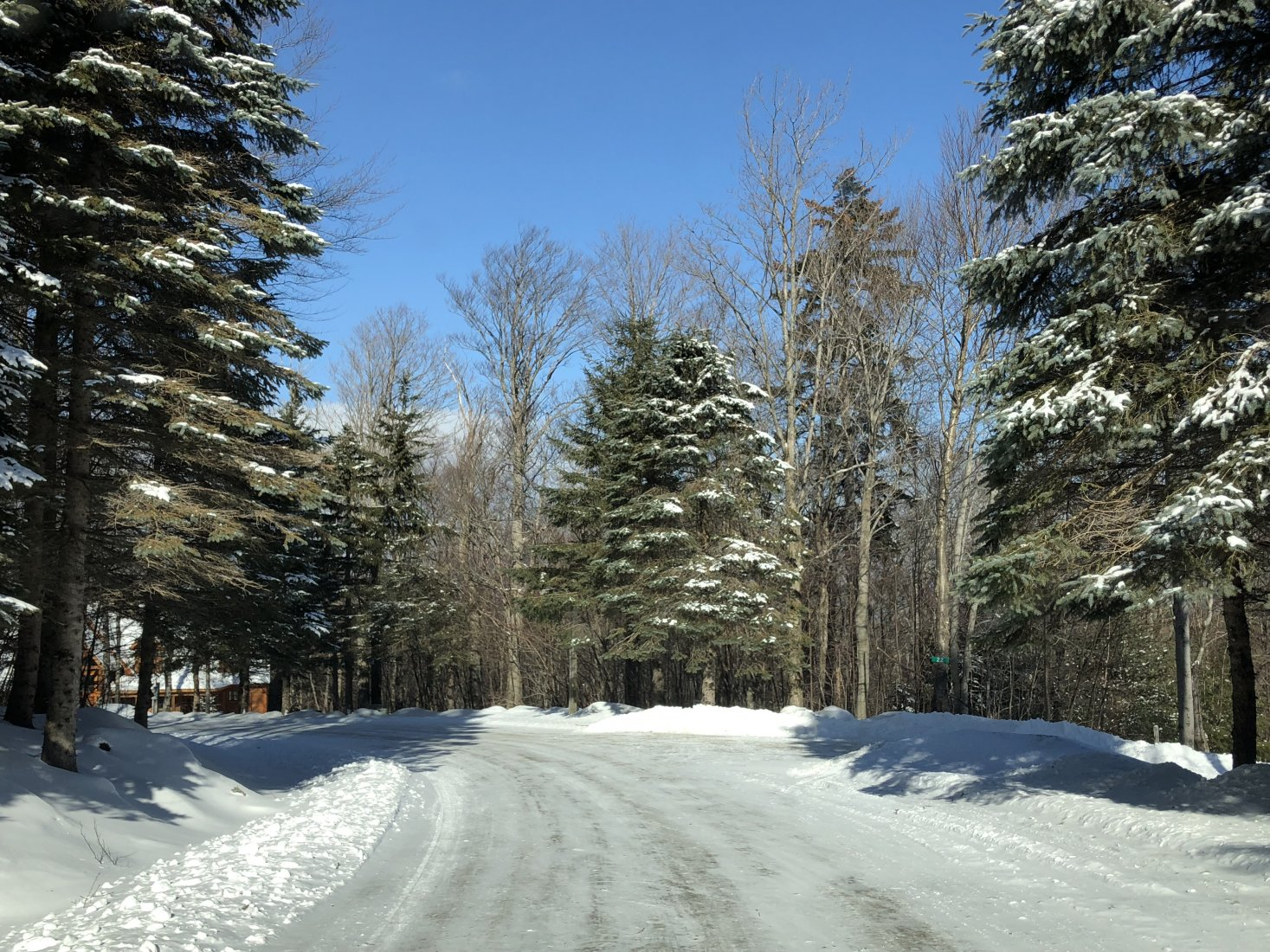 Approach to Ski Lot Home
