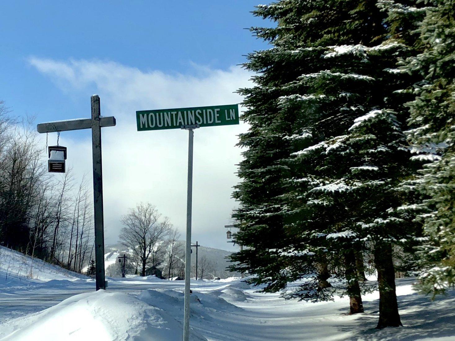 Mountainside Lane